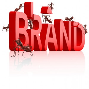 How to Start Building your Brand