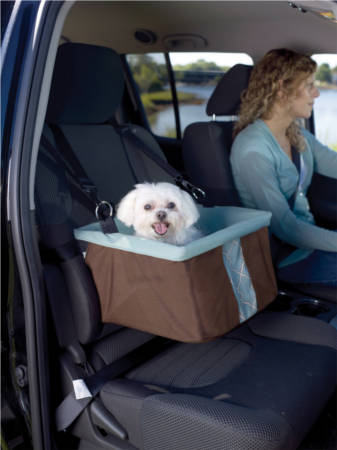 Travel Safely With Your Pet