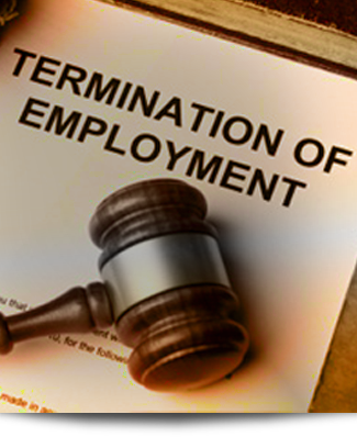 how to become an employment lawyer