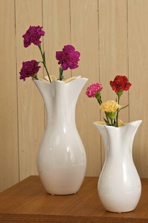 Buy flower vase online