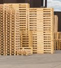 Various Kinds of Pallets