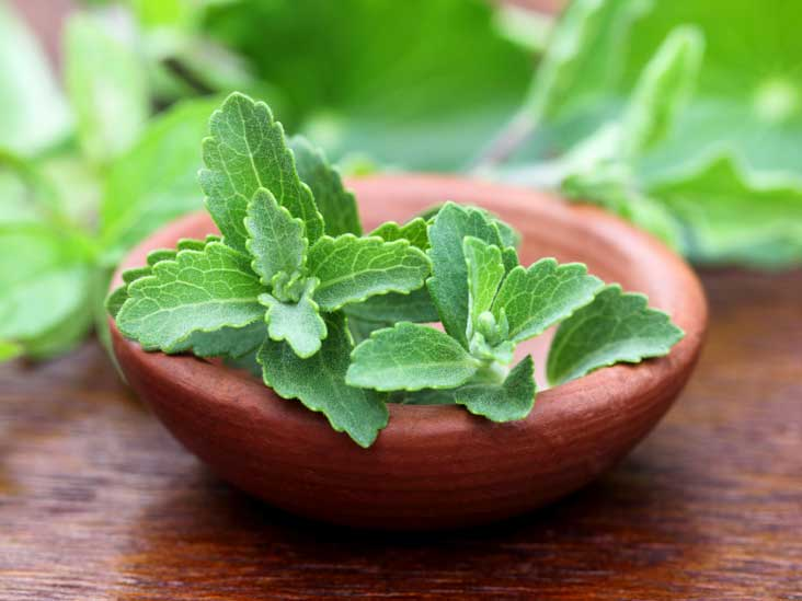 healthy aspects of using Stevia leaves