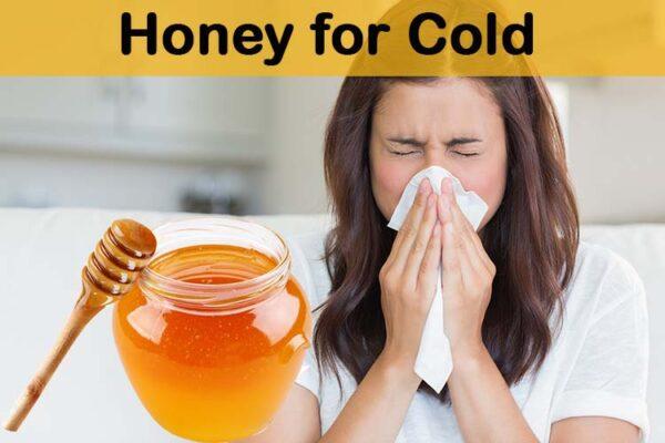 Prevents Allergies