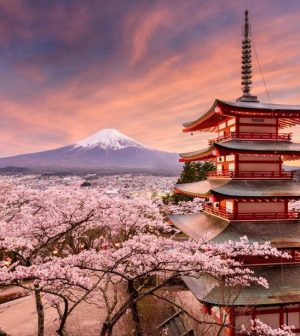 Why a Trip to Japan