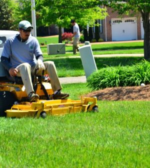 Effective Lawn Cleaning