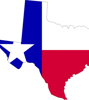 Need To Know Before Moving To Texas