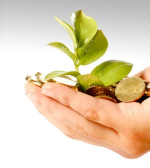 Life Insurance Savings Plan