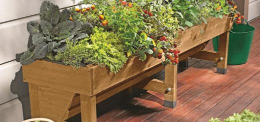 Small Space For A Garden
