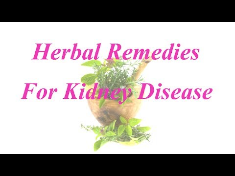 remedies for kidney problems