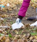 Litter Picking Rubbish Removal
