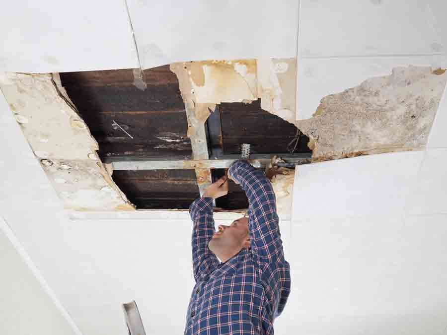 hire water damage experts