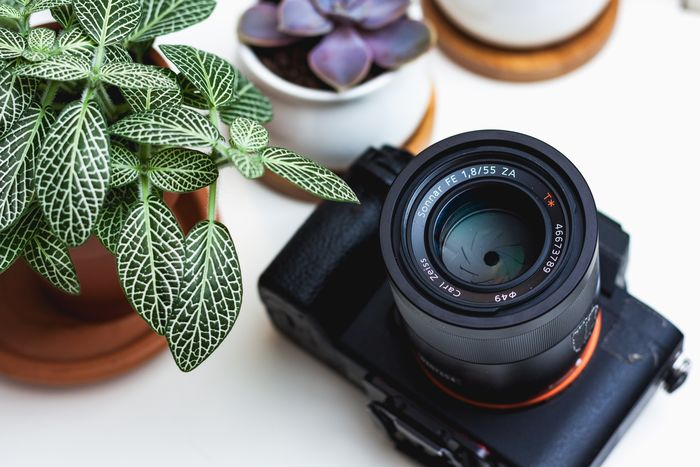 Beginner Needs To Know About Photography